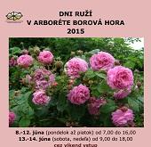 Dni ruží